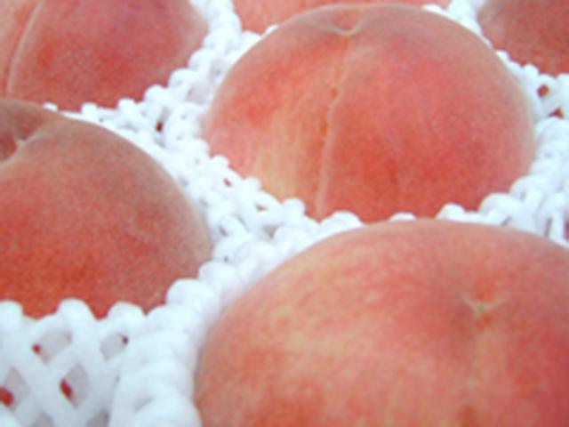 えべしの桃